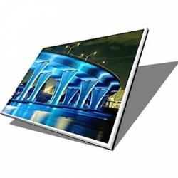 Display Laptop AUO 8.9 LED B089AW01 V.1