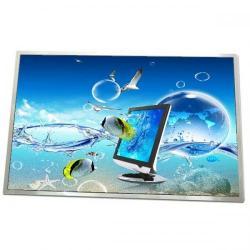 Display LG 10.1