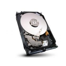 Hard Disk Hitachi Ultrastar A7K2000 1TB, SATA2, 32MB, 3.5inch