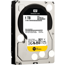 Hard Disk Server Western Digital RE 1TB, SATA3, 64MB, 3.5inch