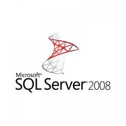 Microsoft SQL Server 2008 Standard Edition for Small Business License OEM